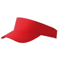 simple sunvisor sun protector