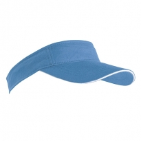 sunvisor with sandwich insertion