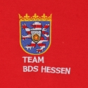 embroidered crest with writing on a polo shirt