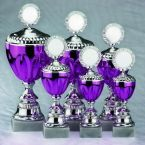 purple goblet set in six different sizes
