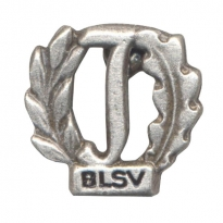 pin BLSV in antique silver